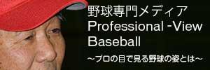 プロフェッショナル・ビュー・ベースボール